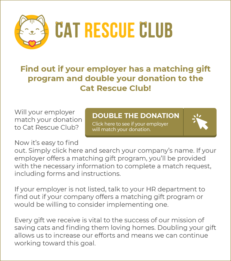 Here's an example of an effective newsletter, another type of matching gift letter.